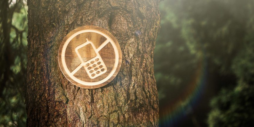 5 Reasons Why It's Time For a Digital Detox