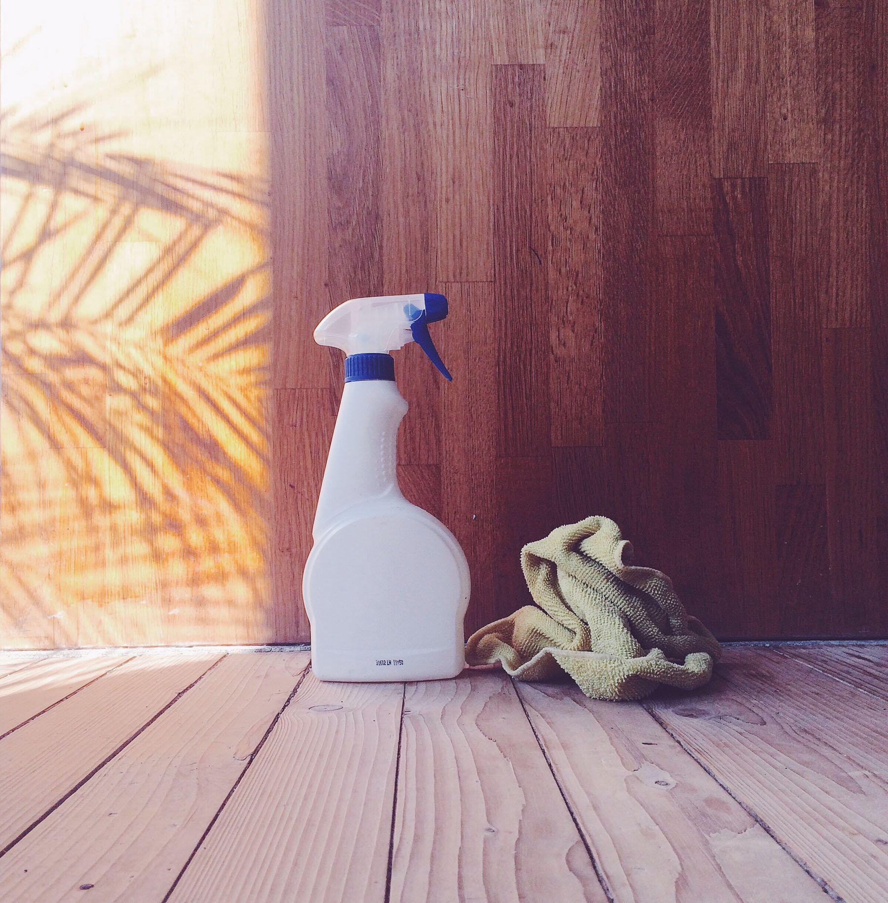 Rethinking Clean: 5 Ways to Detox your Household Cleaners