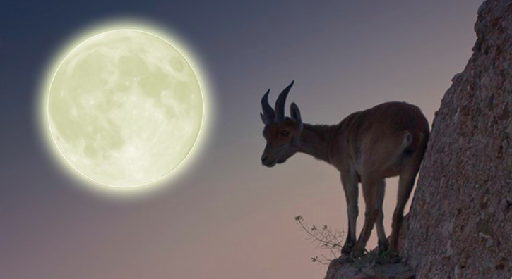Capricorn Full Moon (7/19/16) - Manifesting Real Meaning In Our Life