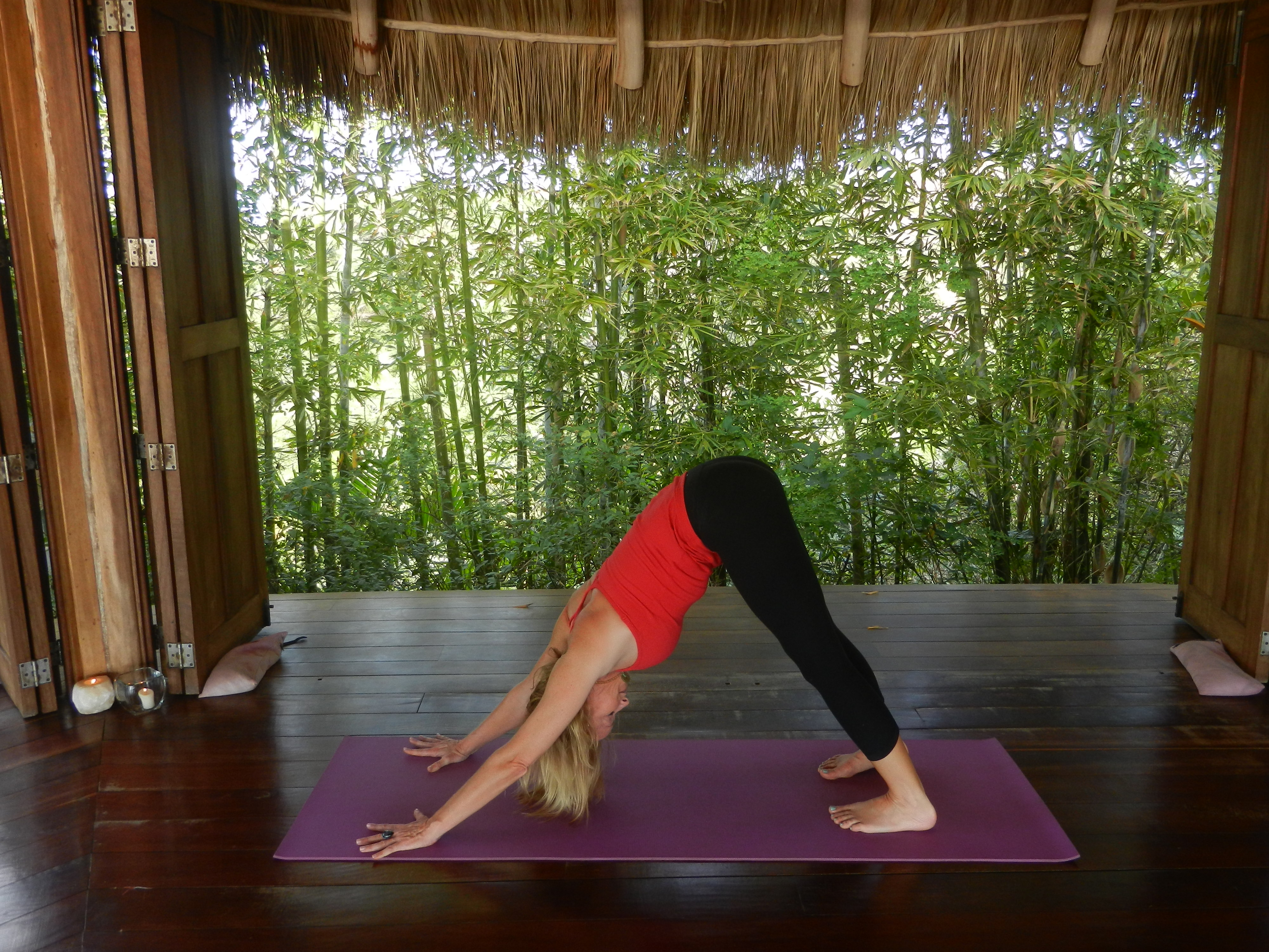 Yoga Pose of the Month: Downward-Facing Dog