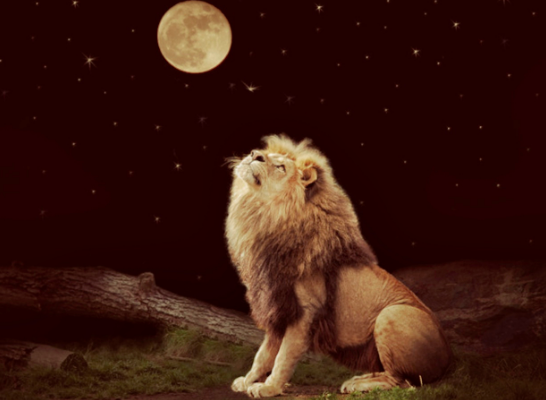 Full Moon & Eclipse in Leo (02/10/17) — Make Manifest Your Magic and Mystery!