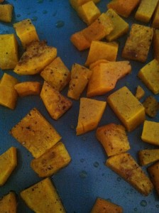 Roasted Butternut Squash Mash