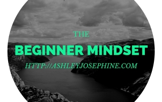 The Beginner Mindset