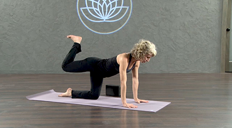 hatha yoga online videos and classes  yoga download