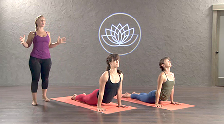 online yoga for beginners classes  videos and basic poses