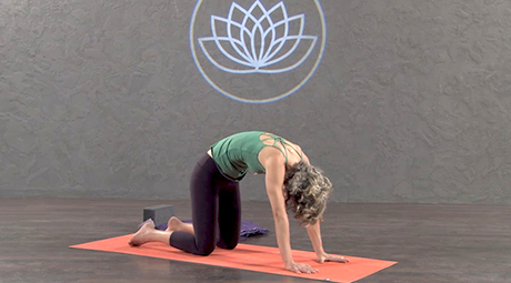 yin yoga online videos and classes  download or stream