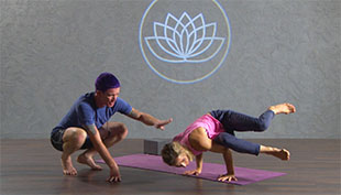 birds of paradise  online vinyasa yoga class with rob loud
