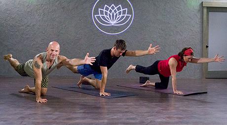 download yoga online  online yoga membership  yogadownload