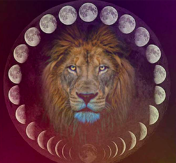 New Moon in Leo: The Joyful Risk is Worth the Soul's Reward
