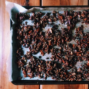 Gluten Free Chewy Millet & Molasses Granola