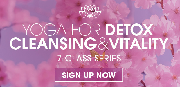 online detox yoga program