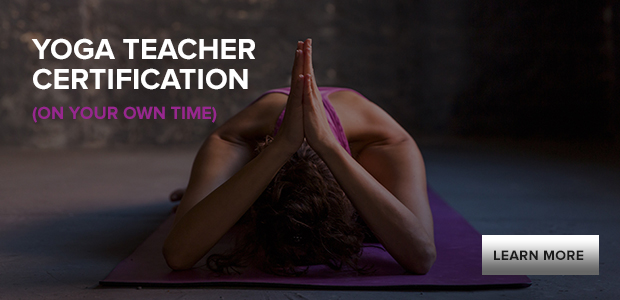 yoga teacher training online